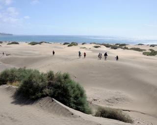 Dunas De Maspalomas 171 Bezienswaardigheden Gran Canaria 171 Royal Gran Canaria